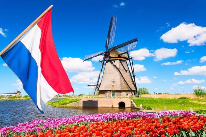 Case de pariuri sportive Olanda (Bonusuri de €100)